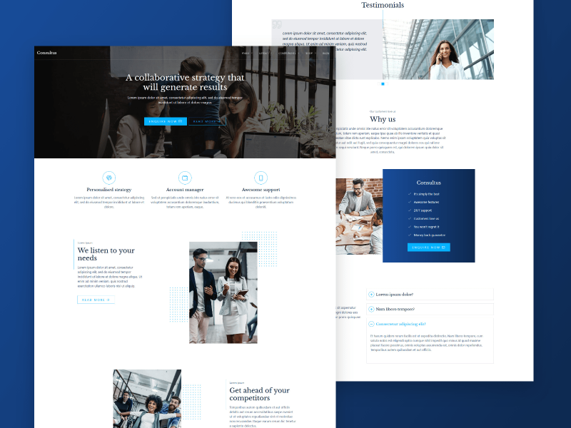 Consultus WordPress theme design